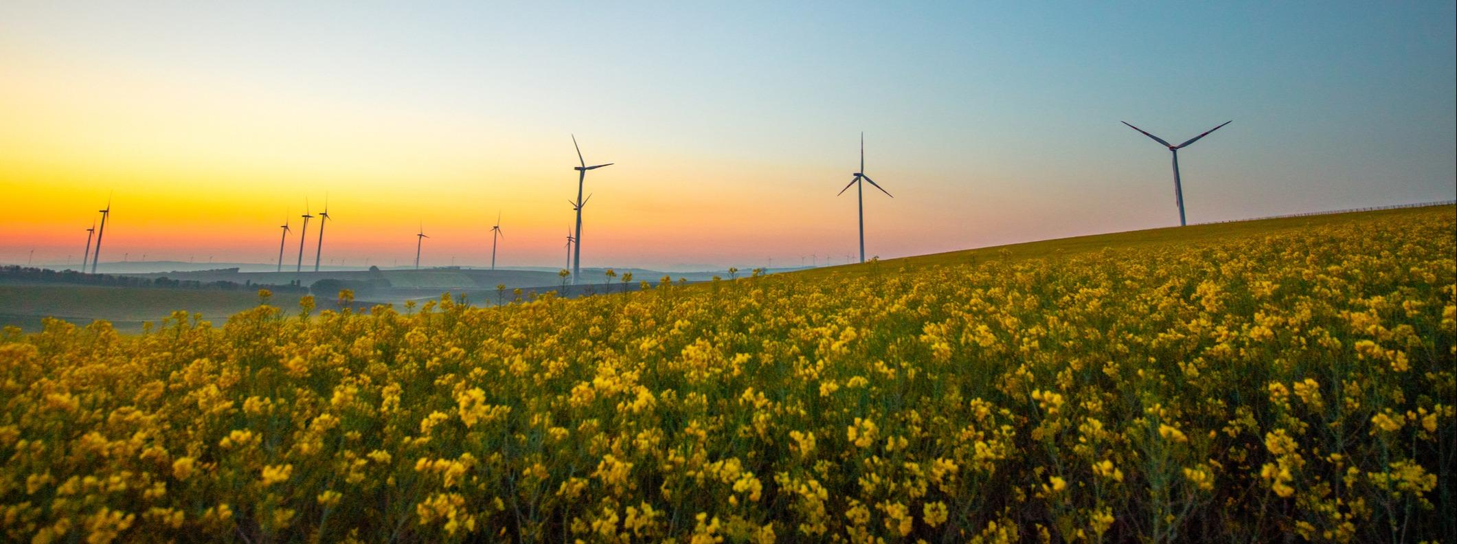 Electronics for energy industry - windmills